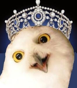 Hedwig crowned